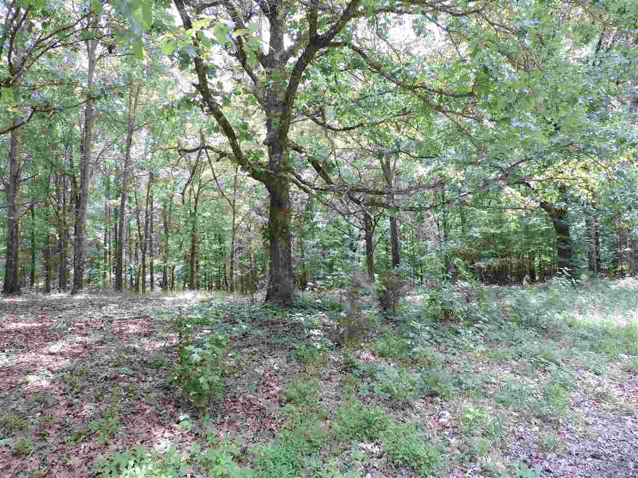 0 Greenbriar Rd Unincorporated, TN 38028 - MLS #: 10002802